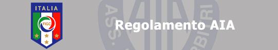Regolamento-AIA